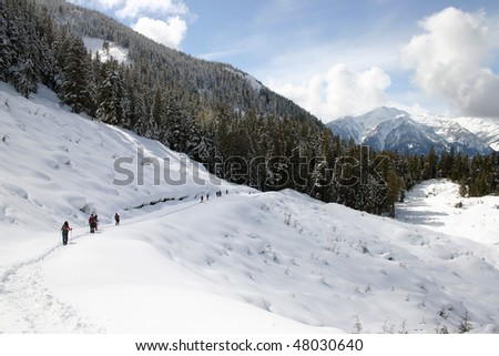 A winter hiking view near Whistler, BC, Canada.