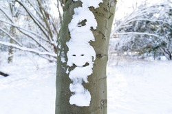 A Winter joke - stem or trunk of tree with snow in the shape of a face smiling and blurry background