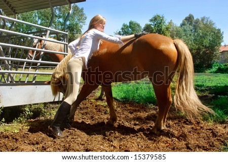 a woman brushing a horse
