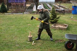 A woman chops wood in a clearing, a lawn with an ax.