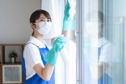 A woman doing a house cleaning job