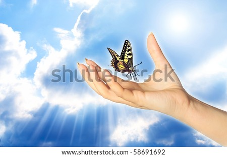 a woman hand and butterfly over a blue sky with rays of light like a concept for spiritual symbol of soul