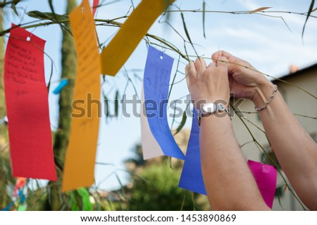 A woman hangs coloured paper strips (Tanzaku) on bamboo branches, for good auspicious, during traditional Tanabata Japanese Festival.