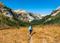A Woman Hiker Walks Through Spider Meadows on a Sunny Day. Glacier Peak Wilderness, Cascade Mountains, Washington.