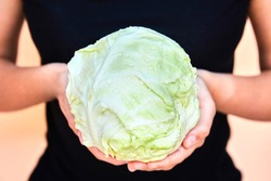 A woman holds a cabbage isolated on a light background, fresh young cabbage in dewdrops of water. The concept of a healthy lifestyle, healthy eating, large of cabbage, cabbage in hand.