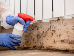 A woman in a protective suit and a respirator sprays a special antifungal spray on the mold-infested wall under the heating battery, Clouse-up.