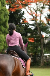 A woman in pink and purple clothes riding a brown horse on the equestrian park