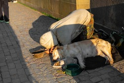 A woman kneels next to a sleeping dog and a puppy begging for alms from passers-by on the Charles Bridge in Prague.