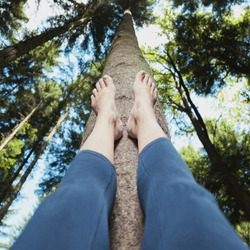A woman lying on the forest floor with legs up. Person touches the tree trunk in the sunny forest with his bare feet. Personal perspective used. Conceptual meditation or healthy living background.