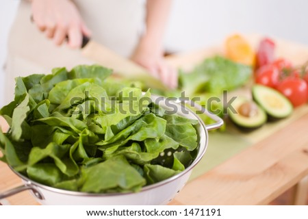 A woman prepares a fresh organic salad. Large butter lettuce in focus puts less emphasis on human figure. Great for adding your own type