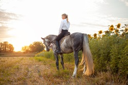 a woman rides a gray horse in a field at sunset. Freedom, beautiful background, friendship and love for the animal. Sports training equestrian, rental and sale of horses, hiking, riding, walking.