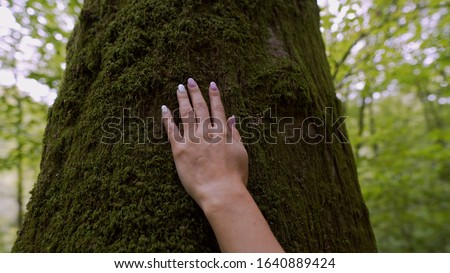 A woman's hand touches a tree that is covered with green moss.