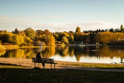 A woman sitting on a park bench by herself in front of a lake. Peaceful and calm.