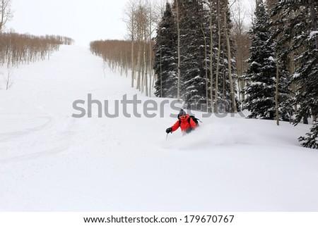 A woman skiing fresh powder snow on a ski run, Utah, USA.