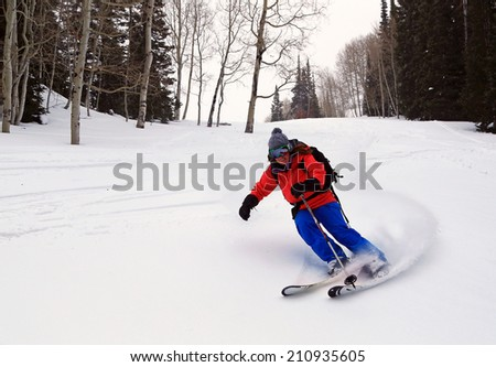 A woman skiing through a forest, Utah, USA.