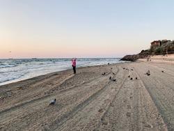 a woman taking photo of sea sunrise on seashore full of seagulls