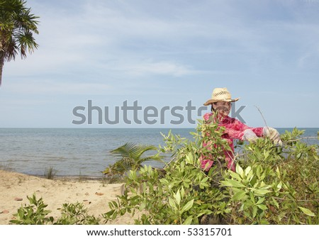 A woman trimming bushes on the beachfront