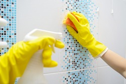 A woman washer is cleaning tiled surface in bathroom. The girl is holding a cleaning spray and a sponge in his hands. Copy space