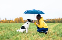 A woman with her dog sitting under a large umbrella in the rain. A young girl crouched in front of her dog on a green field in the background of the forest, rainy autumn. Outdoors or outside