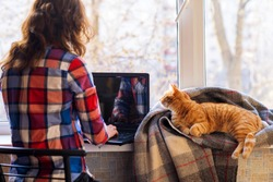 A woman working on a laptop, and lies next to red cat on a plaid. The concept of remote work. Self isolation. Workaholic. Work at home. Home insulation.