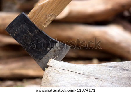 A wood handled axe with chopped wood background.