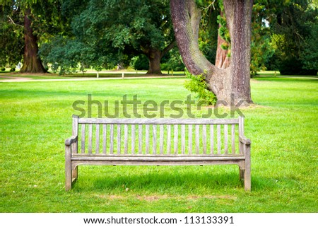 A wooden bench in lush green parkland in summer
