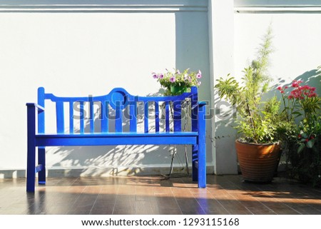A wooden blue bench, white wall background with copy space and decorative trees and flowers in the garden.