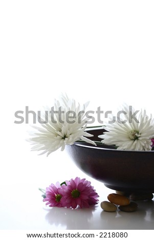 A wooden bowl with white and pink chrysanthemums ready for a sensual spa treatment, complete with natural pebbles against white with copyspace.