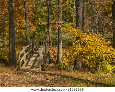 A wooden footbridge in the woods on one of the many hiking trails and parks in Bucks County, Pennsylvania.