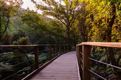 A wooden path through the natural environment of Las Batuecas-Sierra de Francia Natural Park, Salamanca, Spain