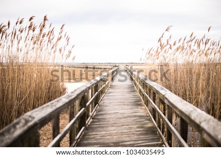 A wooden pier in Long Island, New York at Sunset. #1034035495