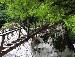 A wooden staircase adjoins huge light boulders covered with moss under dense green trees. Canyon white cliffs. A tourist route