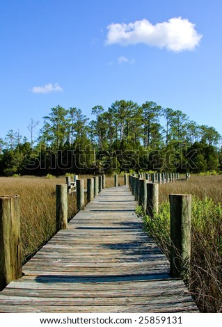 A wooden walkway in a county park near Charleston, SC. - stock photo
