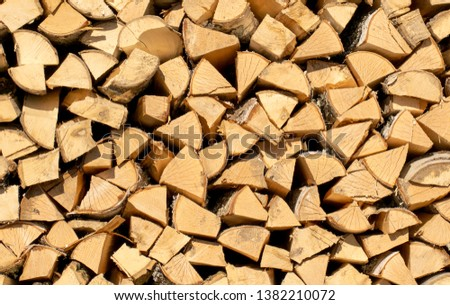 A woodpile of fresh, natural freshly cut and chopped wood.