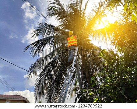 A worker doing maintenance at telecommunication pole. Sun flare. #1234789522