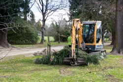A worker prunes trees alongside the road and uses a digger with a bucket on to clean up the waste in Canterbury, New Zealand