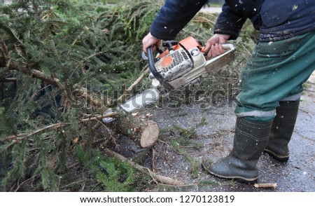 A worker with a chainsaw sawing a tree branch. #1270123819
