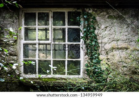 A worn old window with cobwebs and Ivy