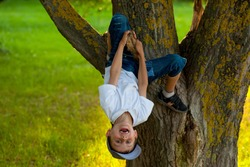 A 7 year old boy dangling on a tree, looking happy and smiling, enjoying being in nature