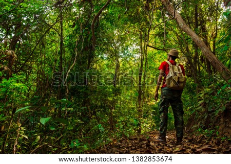 A young adventurer with a backpack standing in forest after tired  .concept of living and adventure on a single holiday in the jungle, forest in Thailand, Phang Nga, Koh Yao Yai. #1382853674