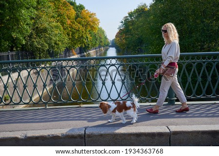 A young blonde woman in light casual clothes walks with a Cavalier King Charles Spaniel dog in the historical center of the small town of Kronstadt on a sunny fine day along the cobblestones Photo stock ©