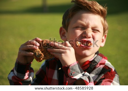 a young boy enjoys fried chicken at a picnic