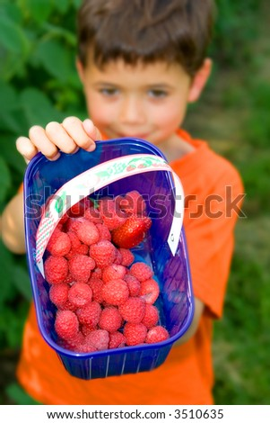 A young boy showing off his freshly picked raspberries in a pick your own farm.