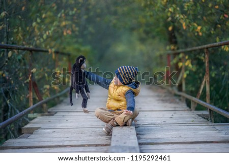 A young boy sits with his favorite toy monkey on the wooden bridge in the park