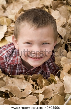 A young boy with his face poking out of the leaves.