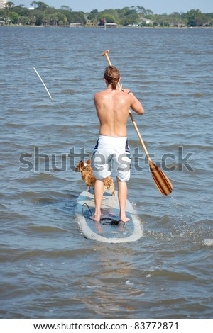 A young man and his Corgi Dog paddle-board in the intracoastal river in Florida.