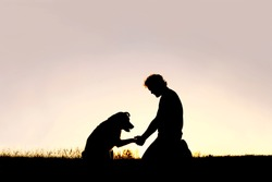 A young man is sitting outside training his pet dog, and shaking hands on a summer evening, silhouetted by the sunset in the sky.
