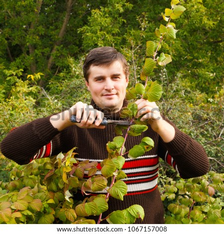 A young man makes an autumn pruning of raspberries. #1067157008