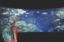 A young man with backpack looking at fish in a tank at the aquarium