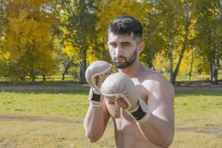 A young mixed martial artist in fighting gloves stands in a boxing stance against the background of an autumn landscape and looks into the camera.